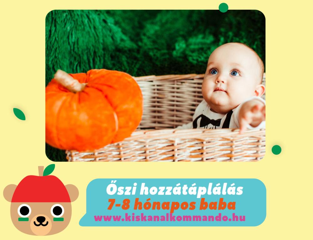 Őszi hozzátáplálás 7-8 hónapos baba